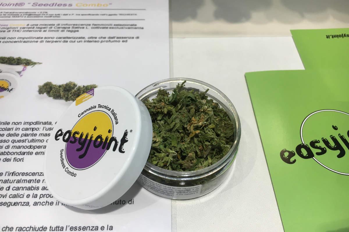 EasyJoint – Il primo produttore di cannabis light legale in italia